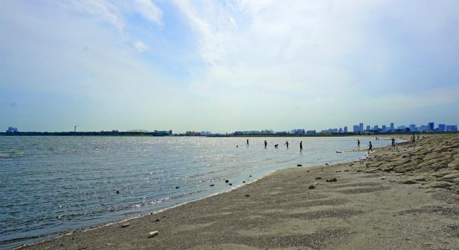 臨海 海水浴 葛西 公園