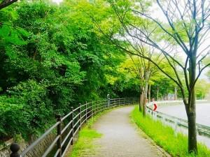 6school_kitano-2