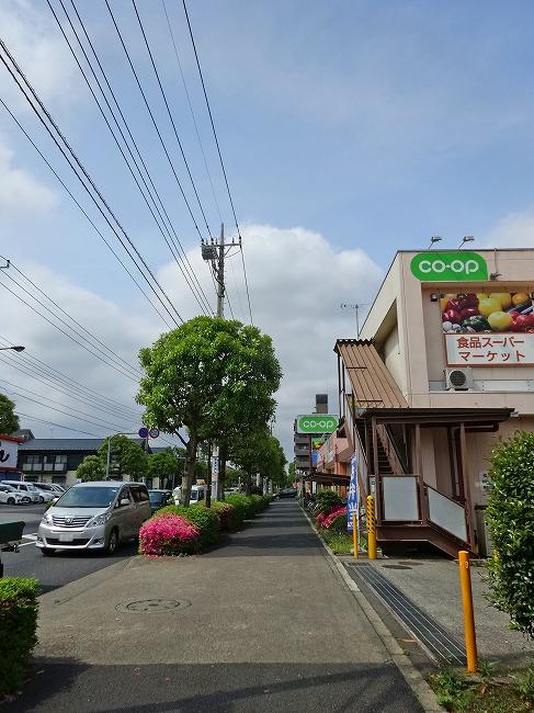 コープ回田店(現地より約220m)