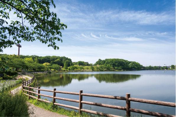 新海池公園1