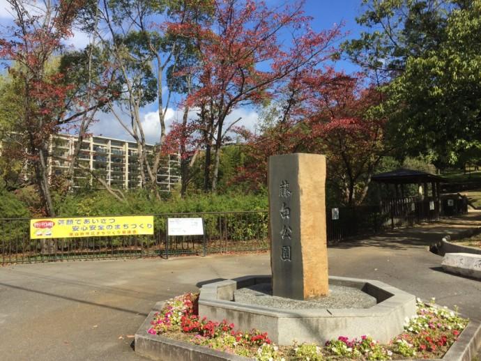 藤白公園 (2)
