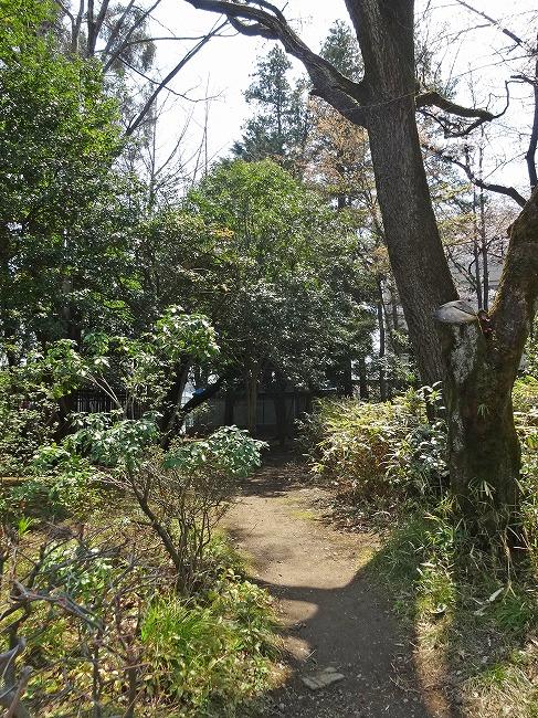 「北浦和公園」(現地より約290m)